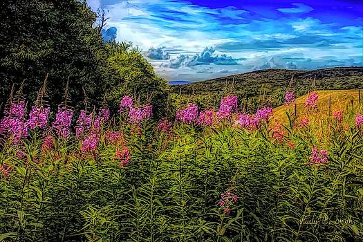 Art photo of Vermont rolling hills with pink flowers in the fore by Rusty R Smith