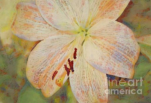 Artistic White Lily by Deborah Benoit
