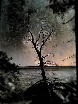 As The Sky Falls by Connie Handscomb