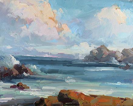 Asilomar Tides by Steven McDonald