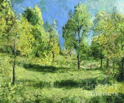 A Solitary Elm by Dragica Micki Fortuna