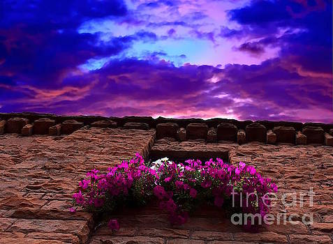 Aspen Sky Flowers by Sherry Little Fawn Schuessler