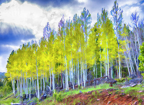 Aspens in the Spring by Jennifer Stackpole