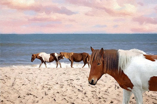 Assateague Ponies At Sunset by Sandi OReilly