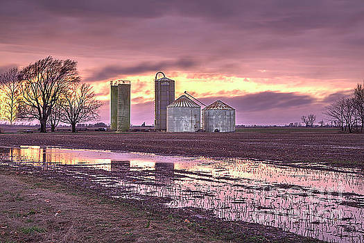 Larry Braun - Assorted Grain Bins