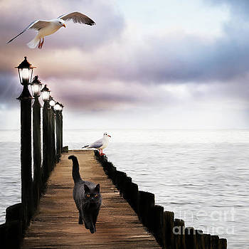 At The Jetty by Anne Vis