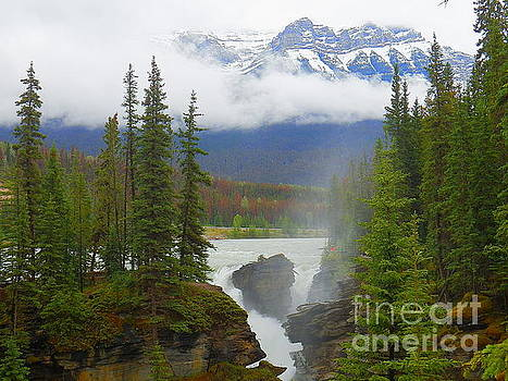 Athabasca Falls Jasper National Park Alberta Canada by Art Sandi