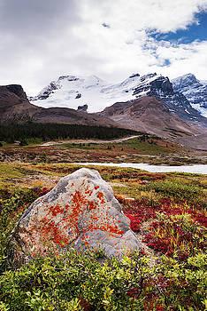 Athabasca Glacier I by Yuri San