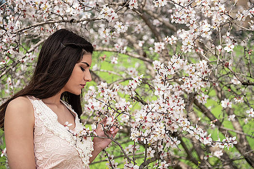 Attractive young beautiful lady,  enjoying spring plum blossom f by Michalakis Ppalis