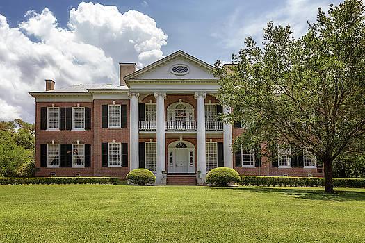 Auburn - Natchez, Mississippi by Susan Rissi Tregoning