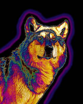 Aura Wolf by Carol Milisen