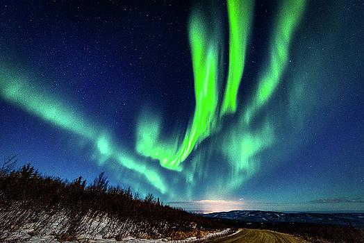 Aurora over Fairbanks by John Wilkinson