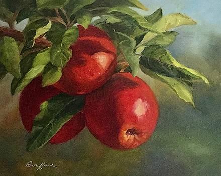 Autumn Apples by Vikki Bouffard