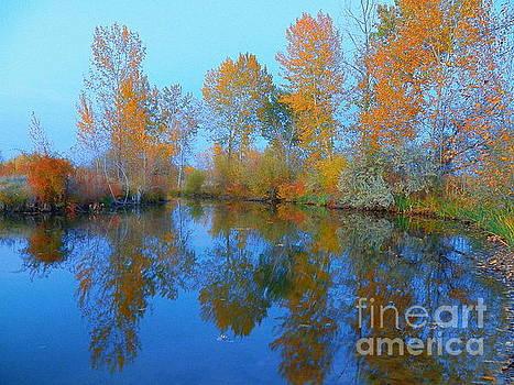 Autumn Aspen by Art Sandi