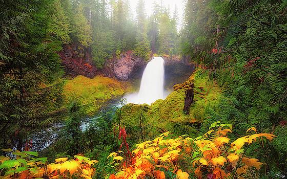 Autumn at Sahalie Falls by Dee Browning