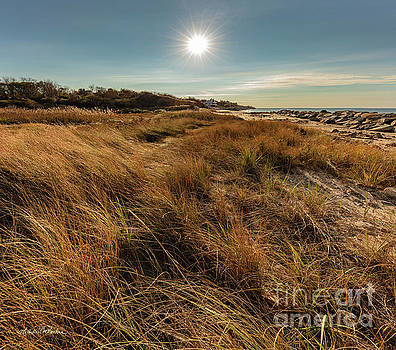 Michelle Constantine - Autumn at the Beach Cape Cod