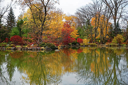 Autumn at the Garden by Peter Ponzio