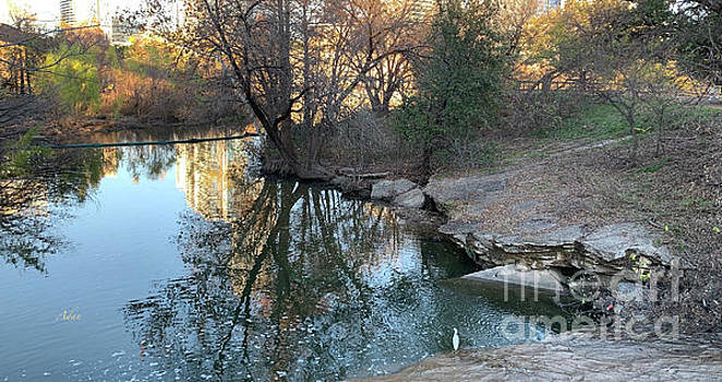 Felipe Adan Lerma - Autumn Austin Along Lady Bird Lake