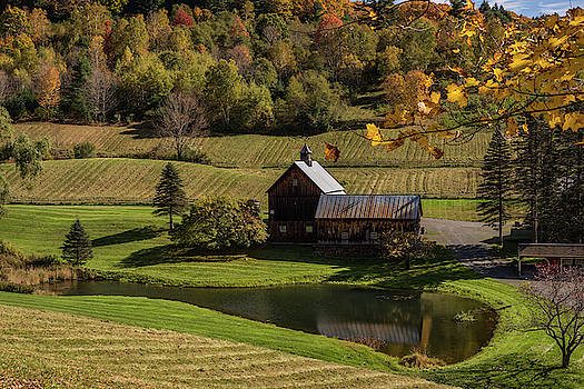 Autumn Barn Vermont 2018 by Terry DeLuco
