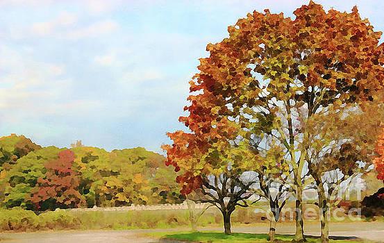 Autumn Beauty by Judy Palkimas