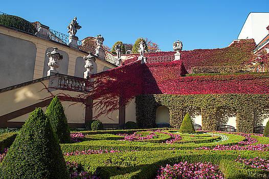 Jenny Rainbow - Autumn Beauty of Vrtba Garden