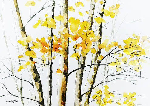 Autumn Birch Trees by Rowena Delfter