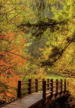 Autumn Bliss by Don Schwartz