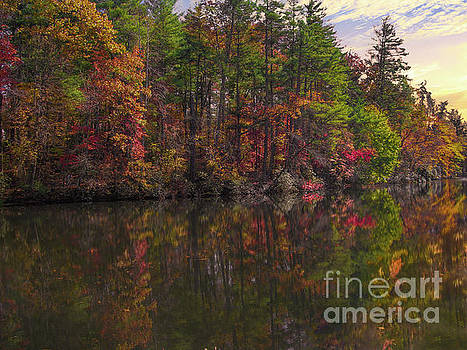 Autumn Color - North Carolina by Dale Powell