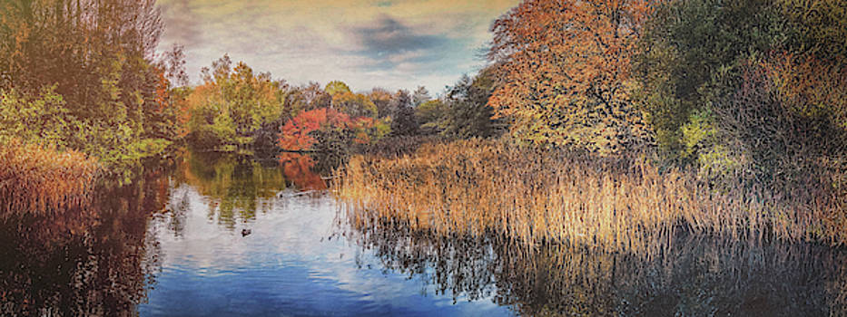 Autumn Colours by Alan Campbell