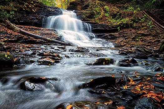 Autumn Days by Russell Pugh