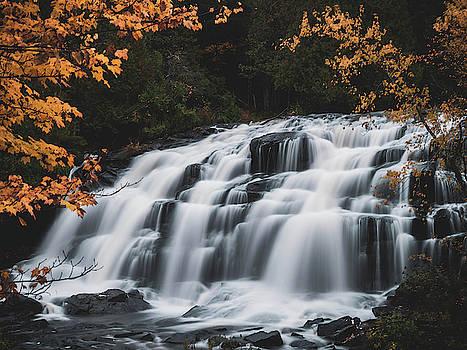 Autumn Falls by Tailor Hartman
