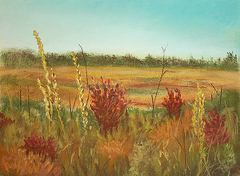 Autumn Fields by Dorothy Riley
