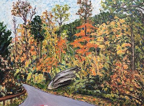 Autumn Gold- Mt. Tom by Richard Nowak