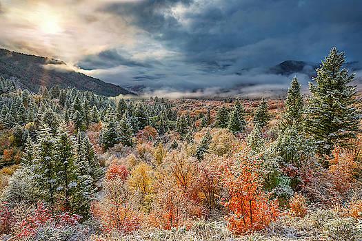 Autumn Grandeur by Leland D Howard