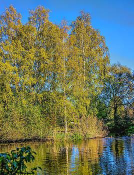 Autumn #i0 by Leif Sohlman