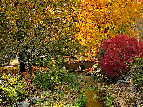 Autumn in Andrews by Kelly Kennon