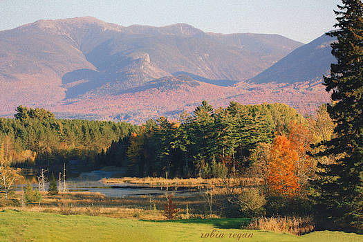 Autumn in New Hampshire by Robin Regan