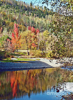 Autumn in northern California WT_032 by Howard Stapleton