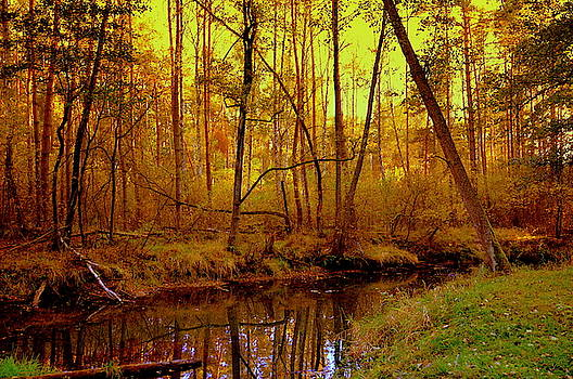 Henryk Gorecki - Autumn - Krasna river