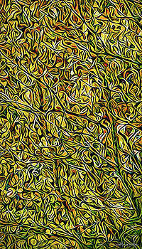 Autumn Leaves Abstract by Joel Bruce Wallach