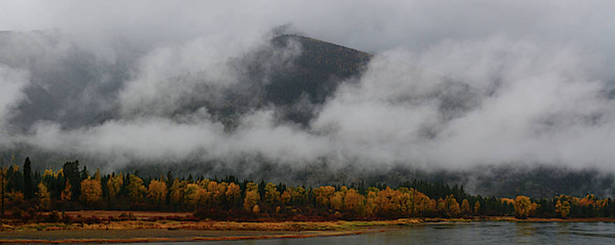 Autumn Mist on the Clark's Fork by Whispering Peaks Photography