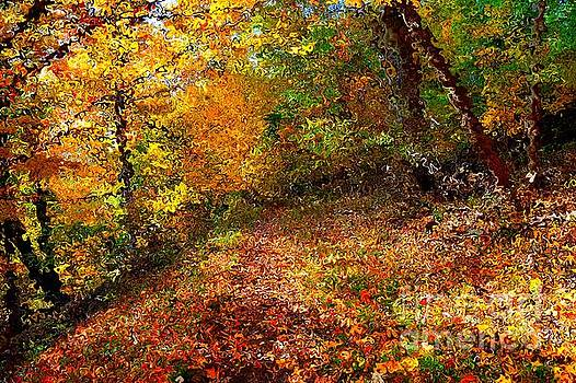Autumn Path in Van Gogh Style by Christopher Shellhammer