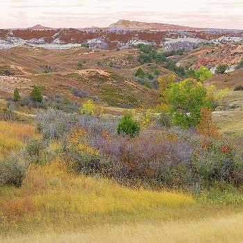 Autumn Prairie Reverie by Cris Fulton