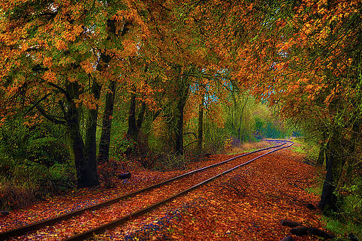 Autumn Rails by Dee Browning