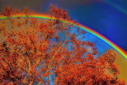 Autumn Rainbow by Garry Gay