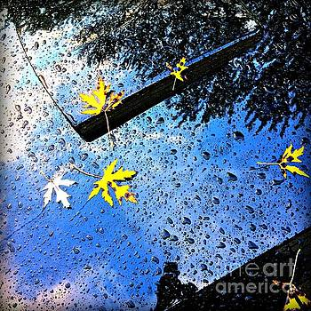Frank J Casella - Autumn Raindrops Car Reflections