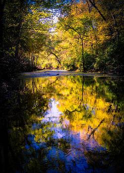 Autumn Reflections by Allin Sorenson