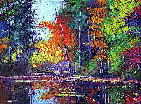 Autumn Reflects On The Pond by David Lloyd Glover