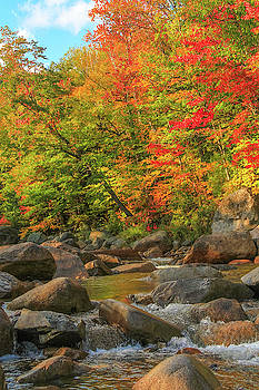 Autumn River by Dan Sproul