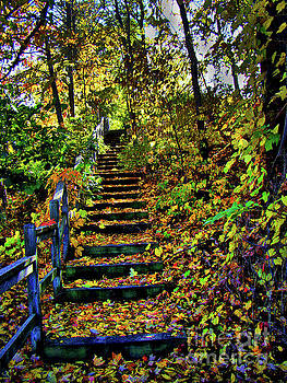 Autumn Splendour In Ontario III by Al Bourassa